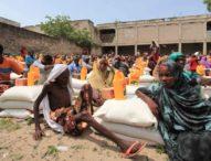 Vers une geopolitique alimentaire en Afrique: un imperatif absolu.